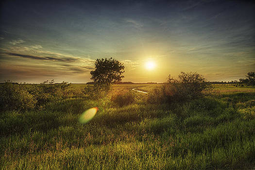 Staring at The Sun by Stuart Deacon