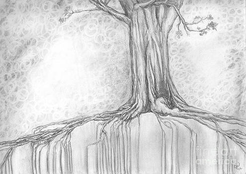Stay Rooted by Crystal June Norton