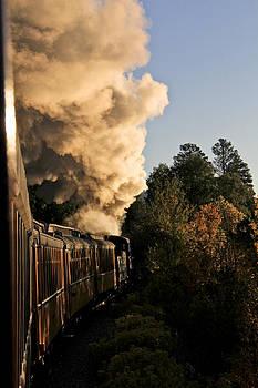 Steam Engine by Marta Alfred