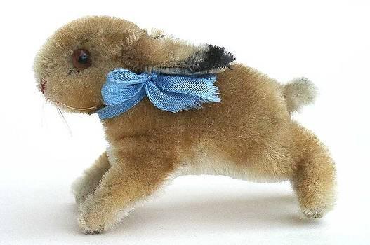 Steiff Bunny by Hillary Rose