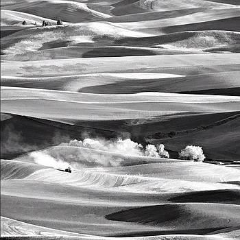 Steptoe BW by Felice Willat