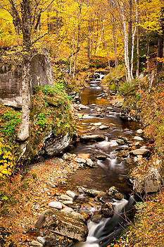 Sterling Gorge Fall Stream 6136  by Ken Brodeur