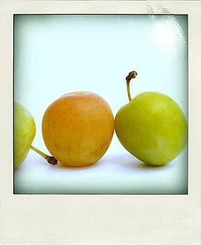 BERNARD JAUBERT - Still life with plums.
