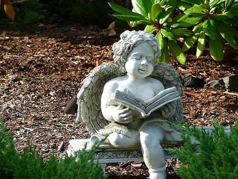Stone Angel by Anke Wheeler