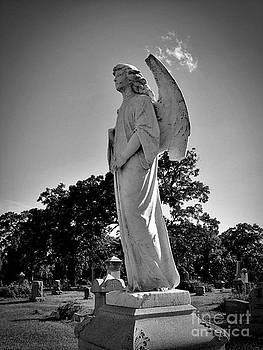 Stone Angel No 3 by Stephany Knight