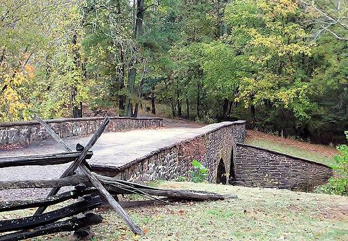 Jim Goldseth - Stone Bridge Manassas