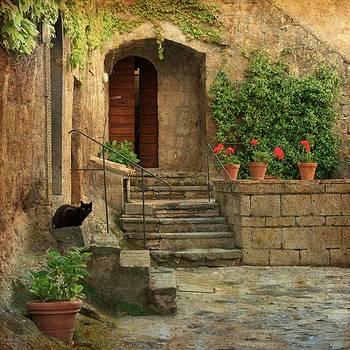 Stone Garden by Daniel Sands