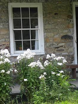 Peggy  McDonald - Stone House Window