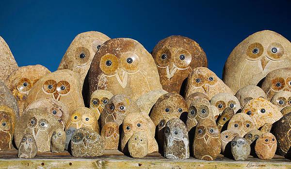 Diana Haronis - Stone Owls