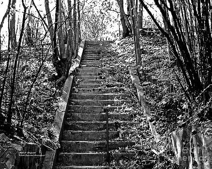 Anne Ferguson - Stone Stairs