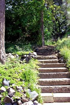 Stone Steps by Myrna Migala