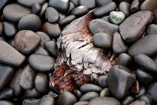 Stones and driftwood by Peggy Quade