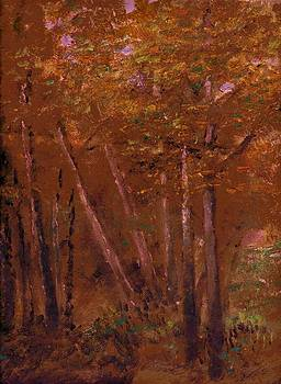Anne-Elizabeth Whiteway - Stopping by Woods