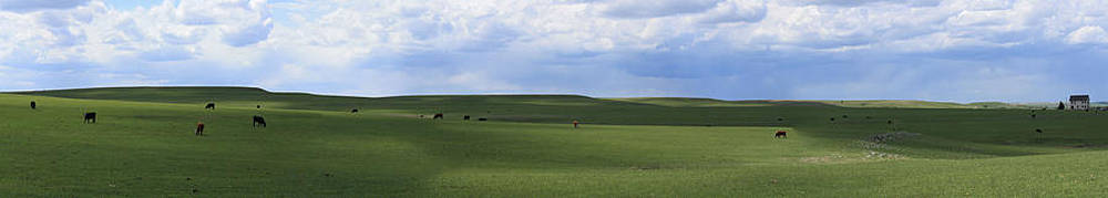 Storm Brewing in the Flint Hills by Bret D Rouse