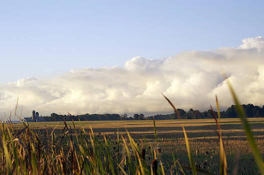 Elaine Mikkelstrup - Storm Clouds