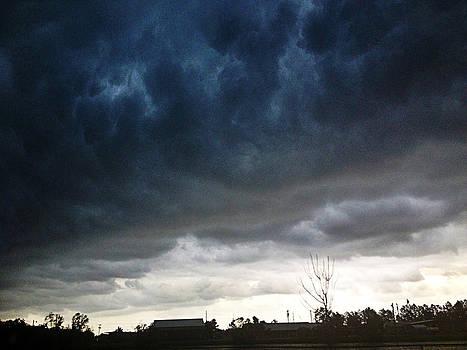 Storm by Tanya Braganti