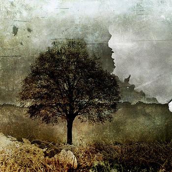 Su Ferguson - Don Burkheimer - Stormy 1