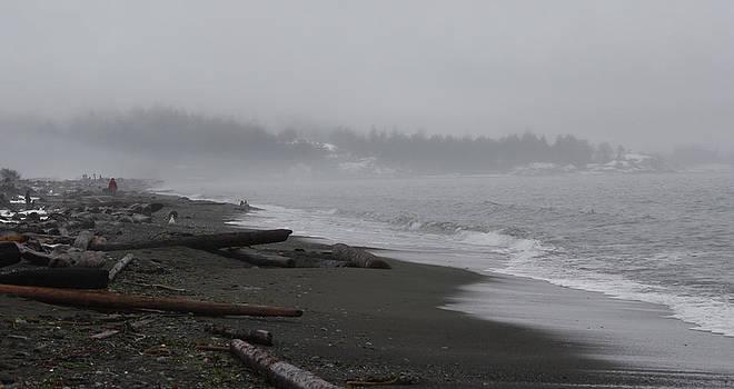 Cathie Douglas - Stormy Beach
