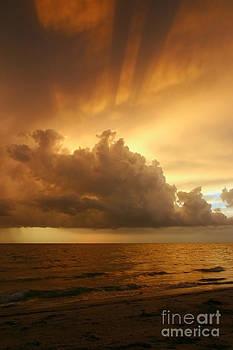 Stormy Gulf Coast Sunset by Matt Tilghman