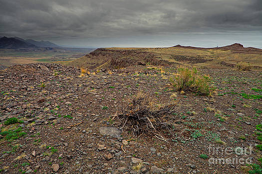 Stormy Mesa by Barbara Schultheis