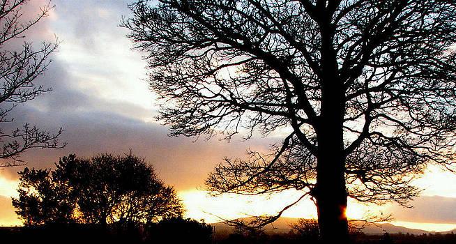 Joseph Doyle - Stormy setting sun