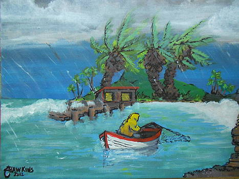Stormy by Timothy Hawkins