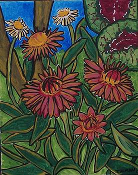 Straw Flowers by Debbie Talman