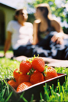 Strawberry Lovers by Royce Gorsuch
