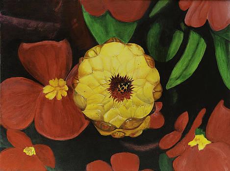 Strawflower by Gail Darnell