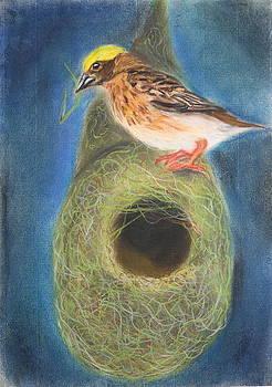 Streaked Weaver bird by Greeshma Manari