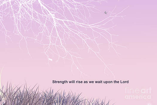 Strength will Rise by Trilby Cole
