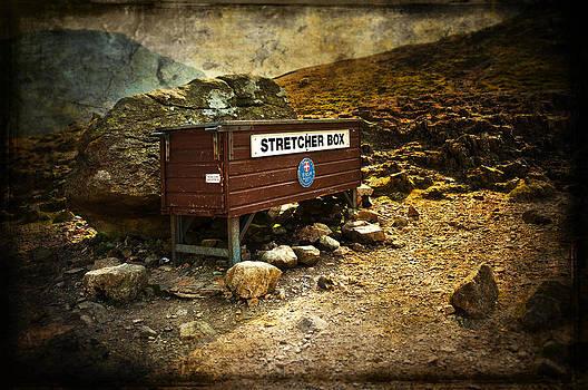 Svetlana Sewell - Stretcher Box
