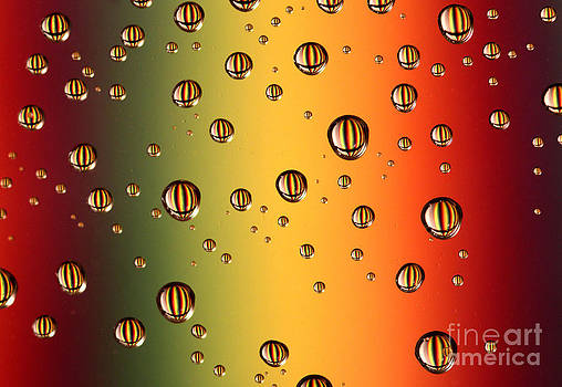 Striped Drops by Casey Hanson