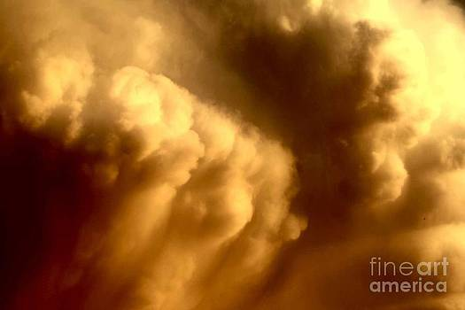 Strong updraft by Anita Floyd