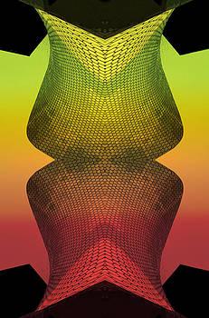 Structural Variations by Jesus Nicolas Castanon