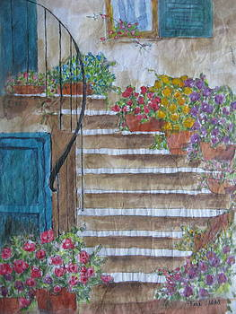 Stucco Stairs by Fran Haas