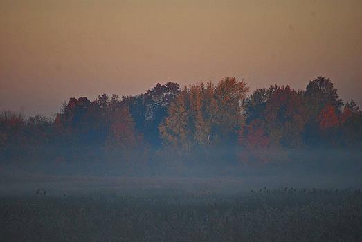 Michelle Cruz - Stunning Autumn in the Mist