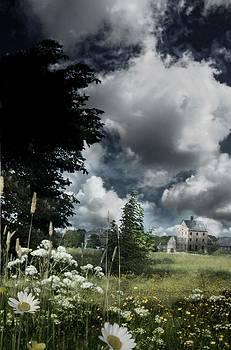 Suffolk Meadows by Tim Kahane