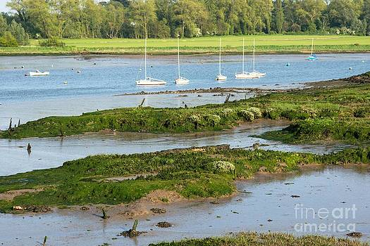 Suffolk Mud flats by Andrew  Michael