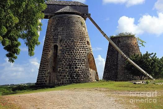 Sophie Vigneault - Sugar Cane Mills
