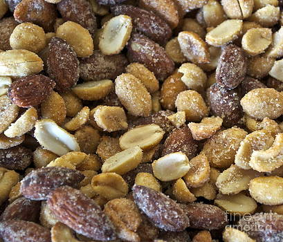 Gwyn Newcombe - Sugar Coated Mixed Nuts