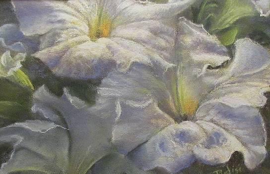 Summer Blooms by Bill Puglisi