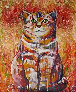 Dreja Novak - Summer Cat