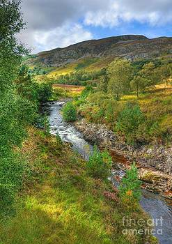 Summer colour in the Glen by John Kelly