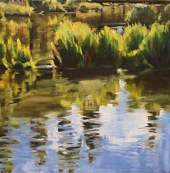 Summer Creek by Conny Riley