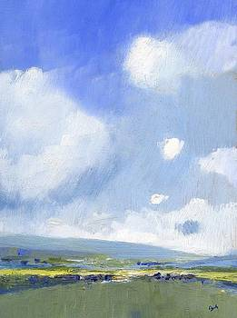 Summer Fields near Shanklin by Alan Daysh