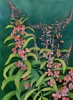 Summer Fireweed by Anne Havard
