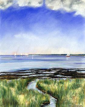 Summer Flats by Paul Gardner