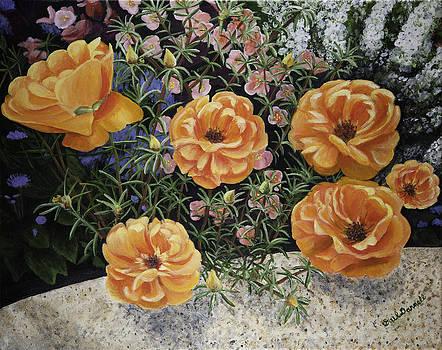Summer Garden - Moss Rose by Gail Darnell