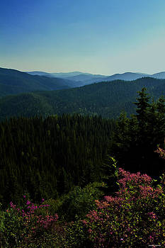Summer in The Mountains by Joseph Noonan